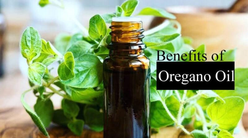 Benefits of Oregano Essential Oil